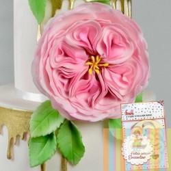 Cortante Rosa Inglesa