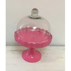 Prato pé rosa com campânula