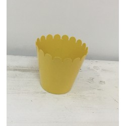 Vaso amarelo (aluguer)