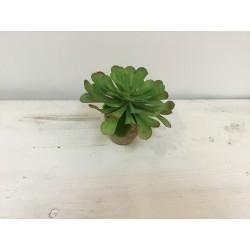Vaso com flor (aluguer)