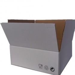 Caixa Cartao 46,5x55,5 cm
