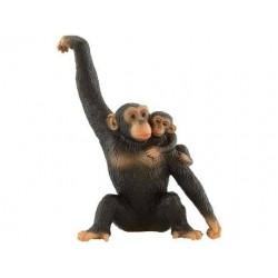Chimpazé com bebé
